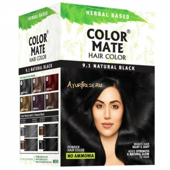Краска для волос COLOR MATE Heir Color тон 9.1, натуральный чёрный 180 гр